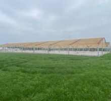 structural steel at Piggery